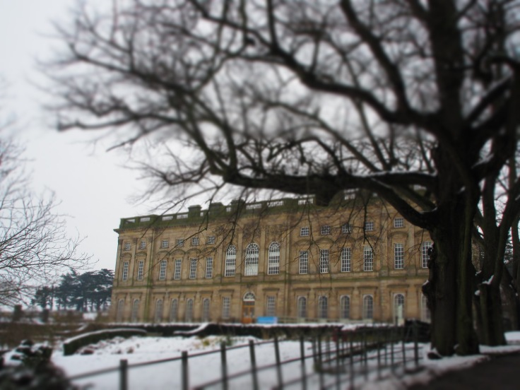 Wentworth House, Barnsley (I did not see the castle's fernery)