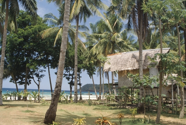 palawan_-_tropical_hut