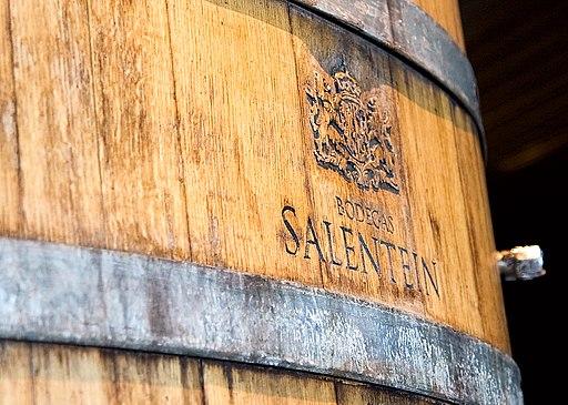 ALTURA_Argentina_Wine_Tourism_-_Bodega_Salentein_-_panoramio