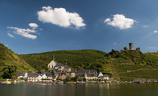Vineyards_in_Beilstein,_Mosel