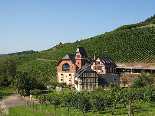 Weinbaudomäne_Trier
